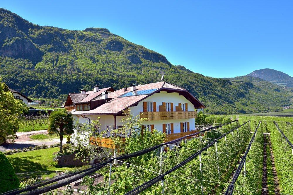 Urlaub auf dem Obst- und Weingut – Weinhof in Andrian/Südtirols Süden