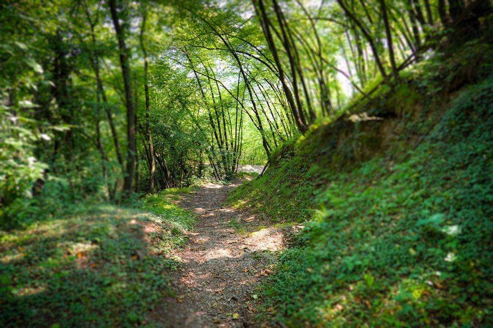 Südtiroler Urlaubsidylle für Naturfreunde